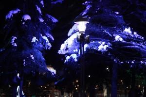 Нічні ліхтарі міста