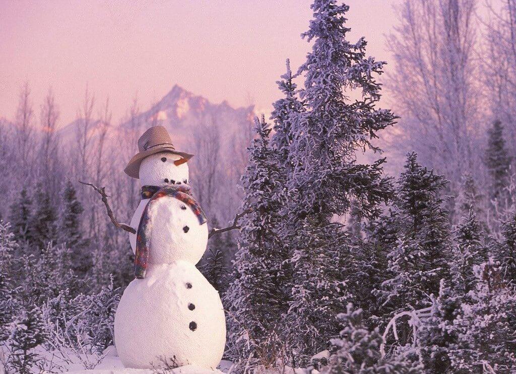 Сніговик-детектив