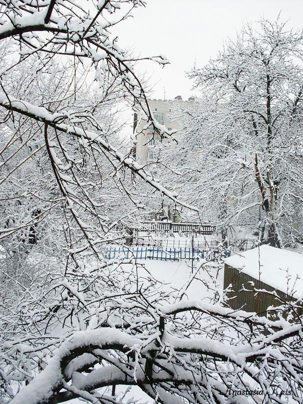 Зимовий двір