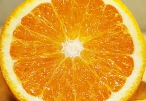 Апельсин. Юлія Яровенко