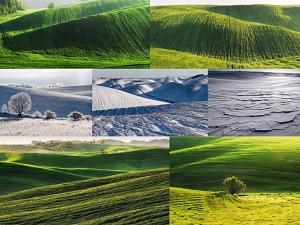 Мальовничі українські поля