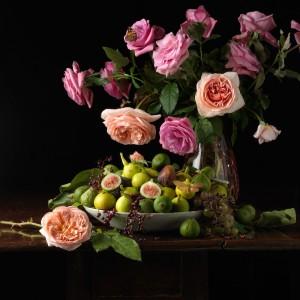 Фото квітів. Троянди