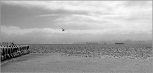 Море. Чорно-біла фотографія