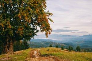 Гори восени