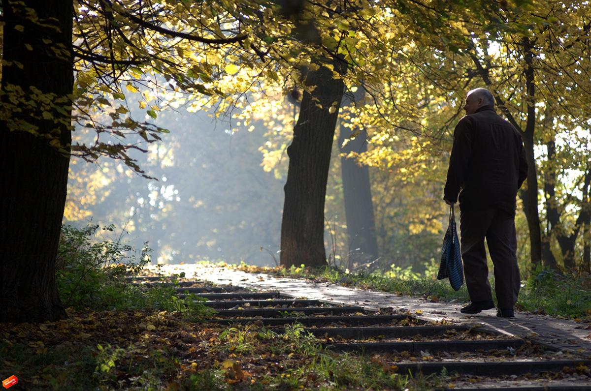 Життя-осінь