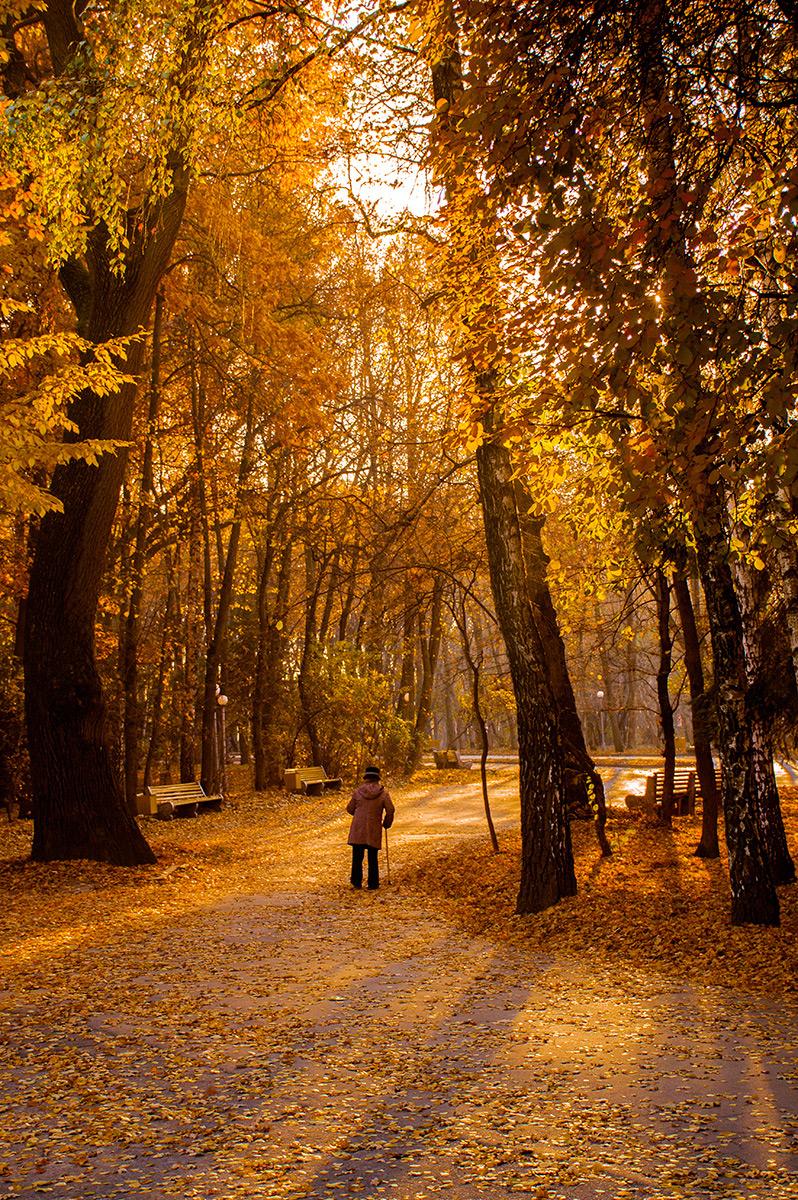 І що то була за осінь...
