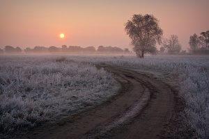 Помаранчевий ранок сивої осені