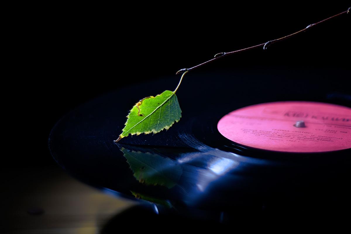 Мелодія осені