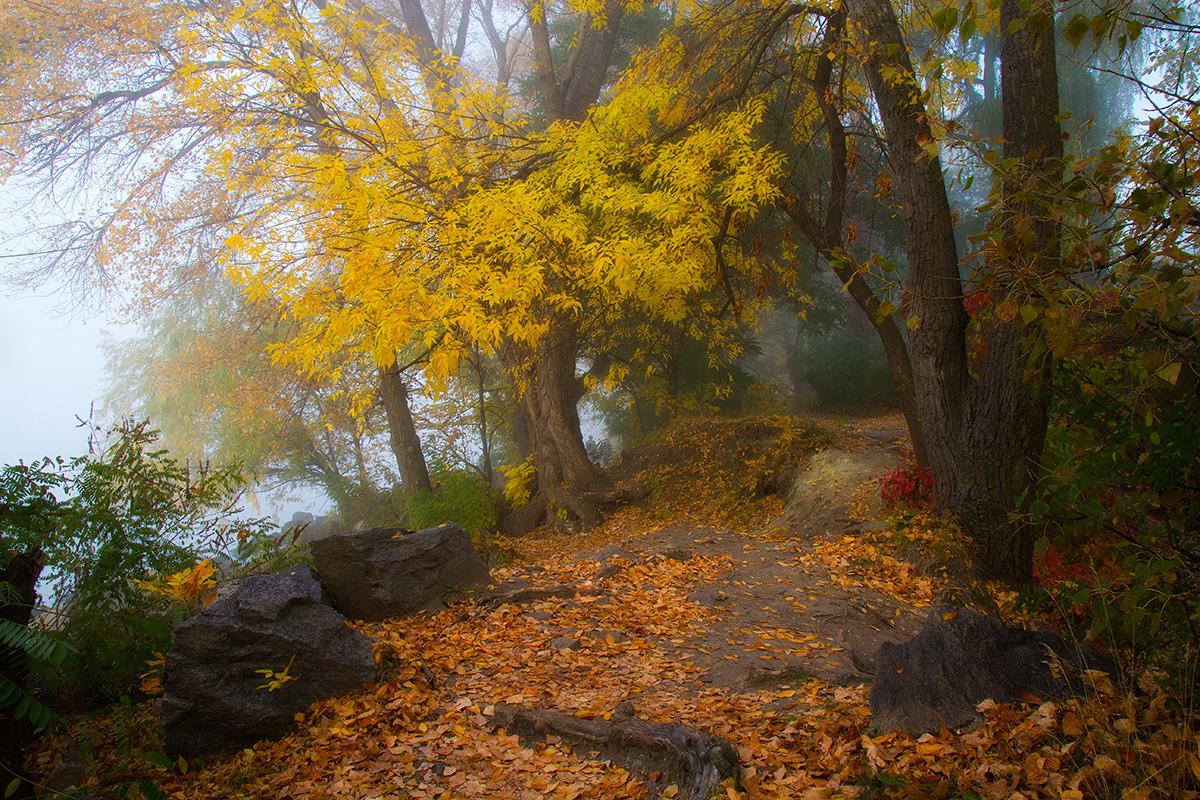 Зачарована осінь
