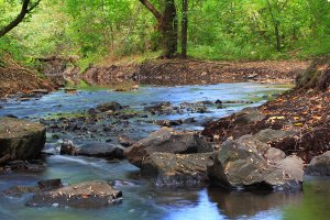 Вереснева річка