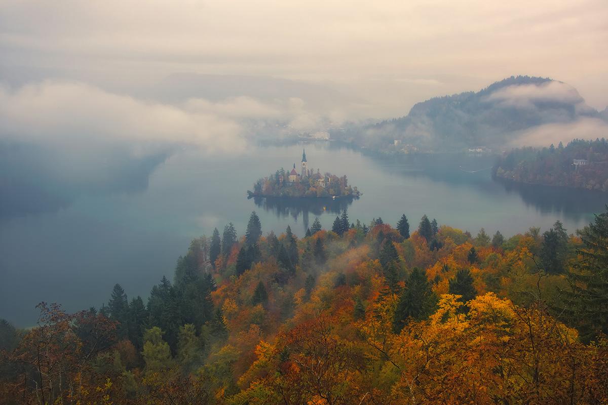Туманний ранок осені