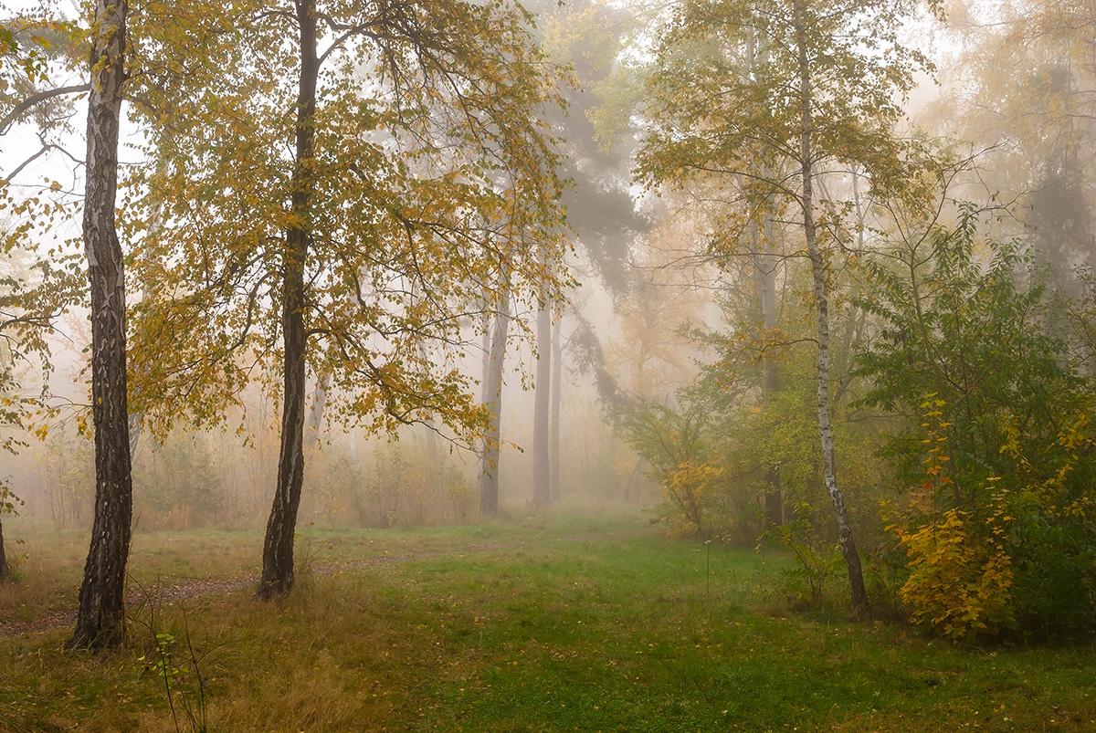 Золото і туман
