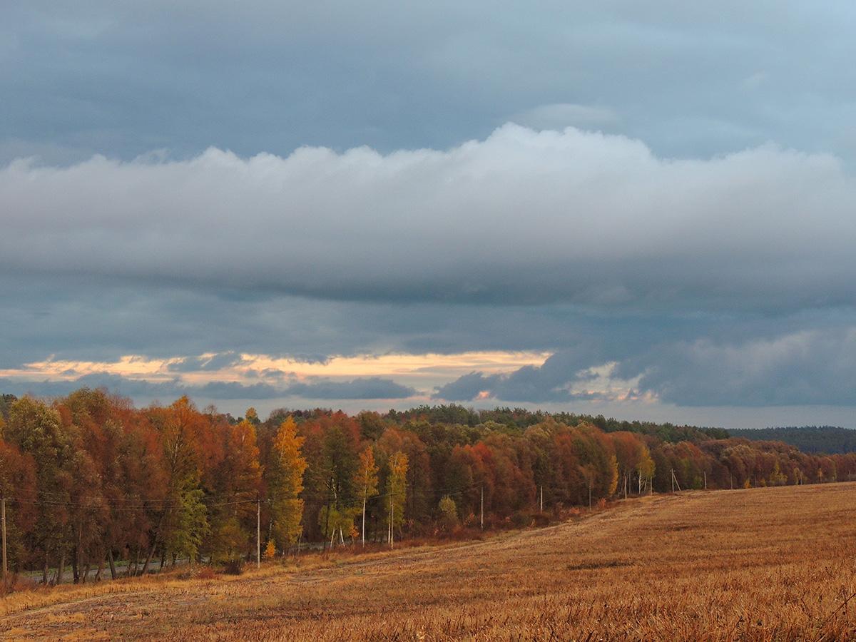 Дорога до осені