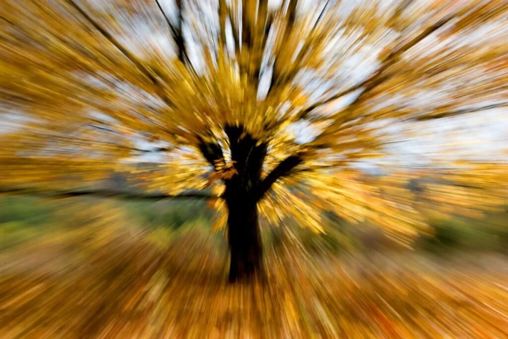 І вибухнула осінь...