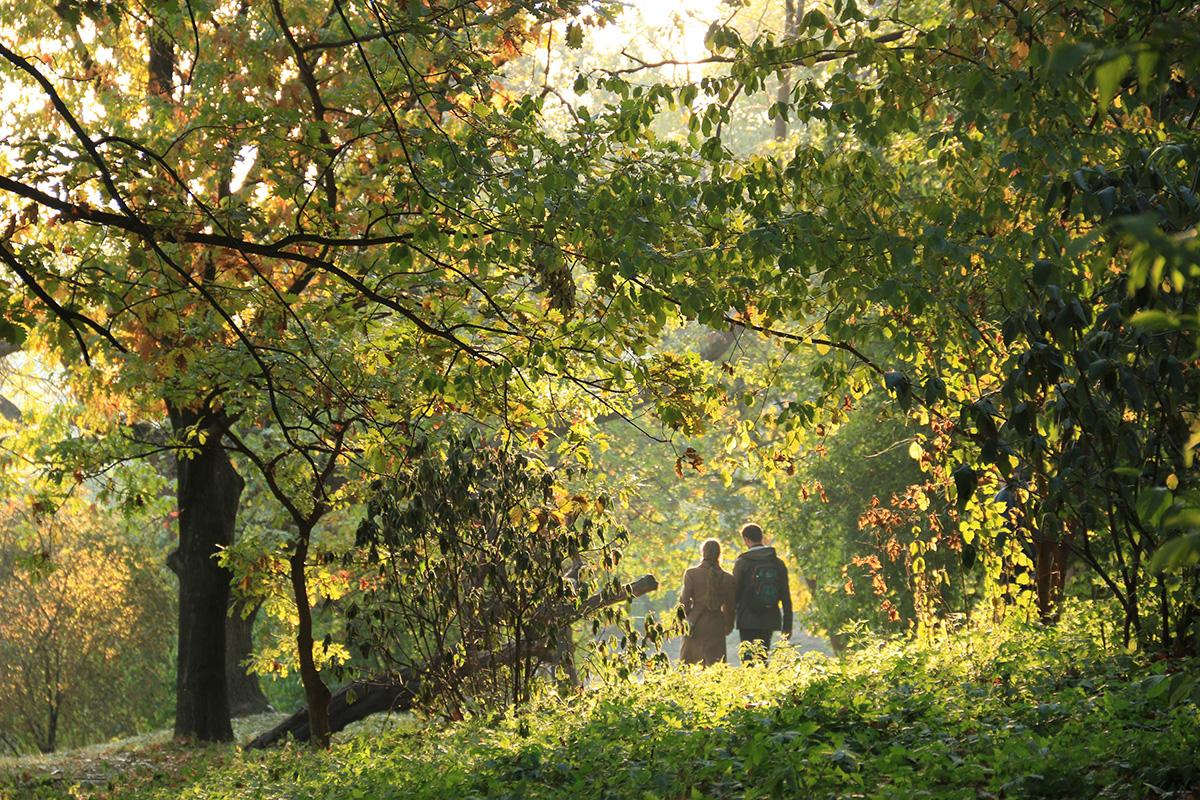 Осіння прогулянка