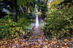 Міст у осінь