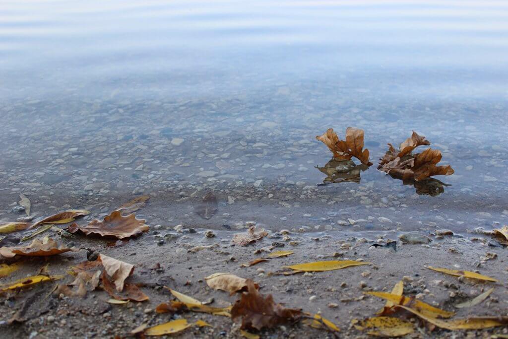 Палаючий берег