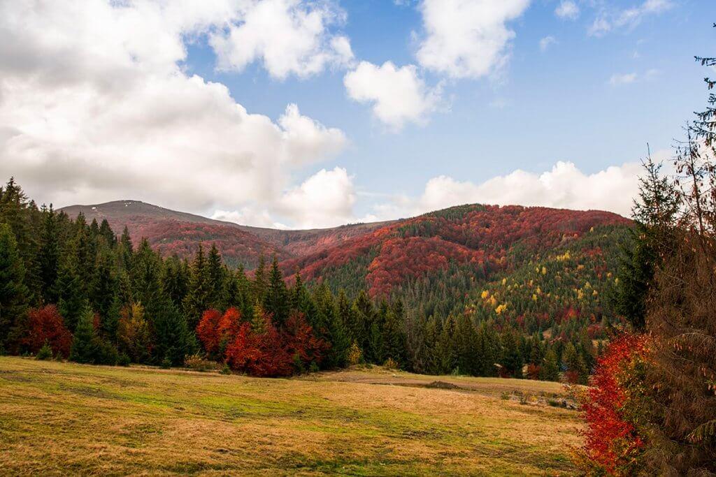 Осінь на горі Гимба