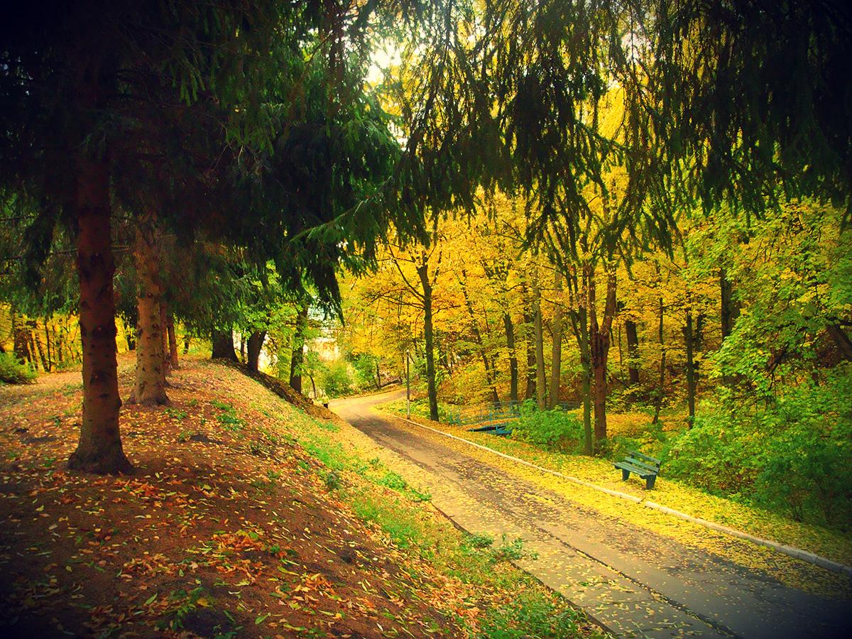 Така різна осінь ч.2