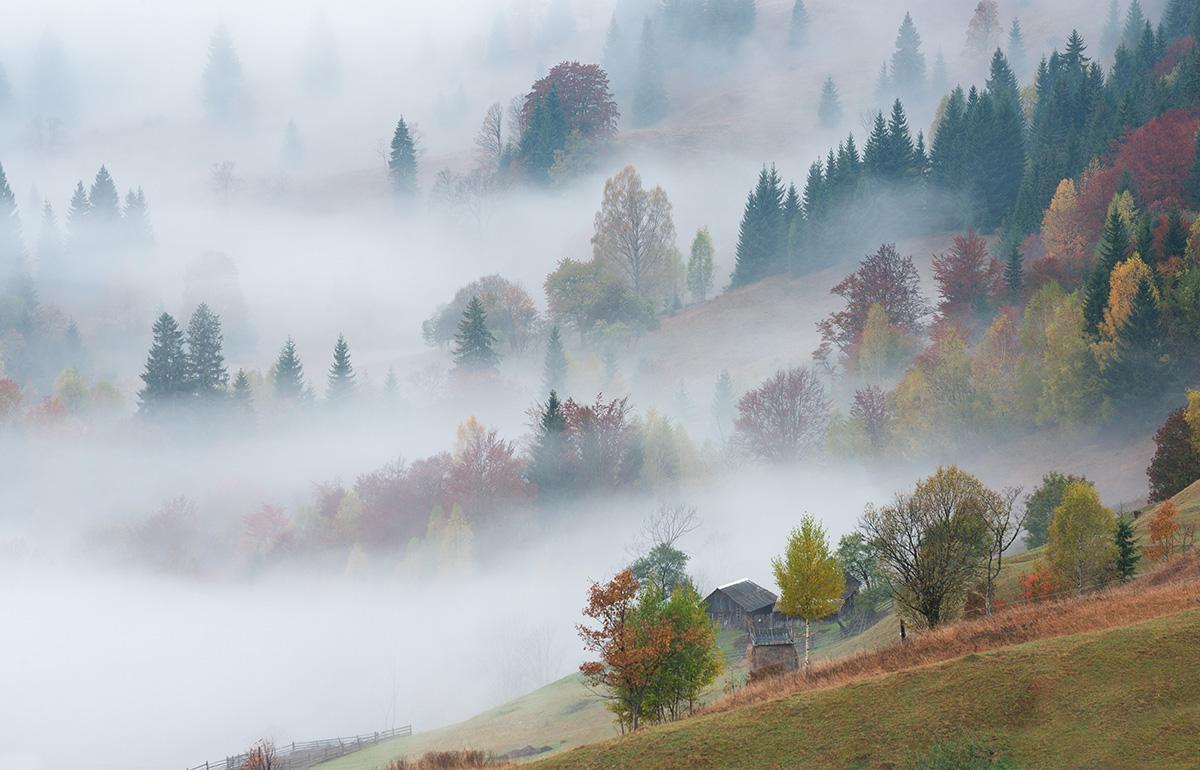 Осінь в Ясінях