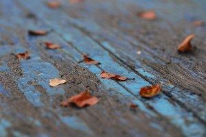За старий стіл в саду присіла осінь