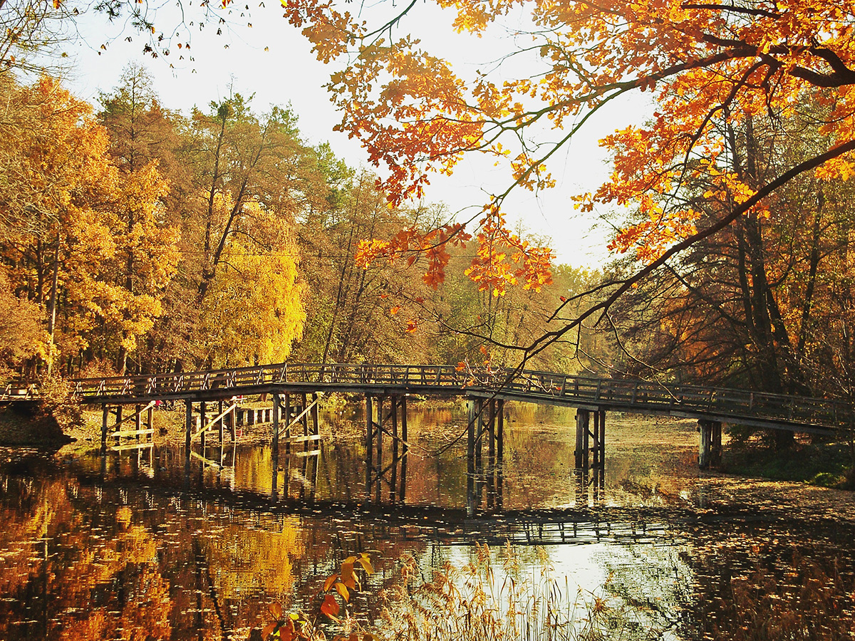 Така різна осінь ч.3