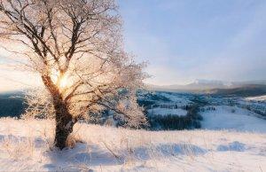 """Фототур """"Сніжними хребтами Закарпаття"""". Автор фото Микола Хорошков"""