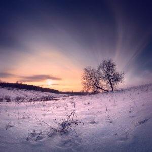 Зимовий пейзаж. Віталій Башкатов